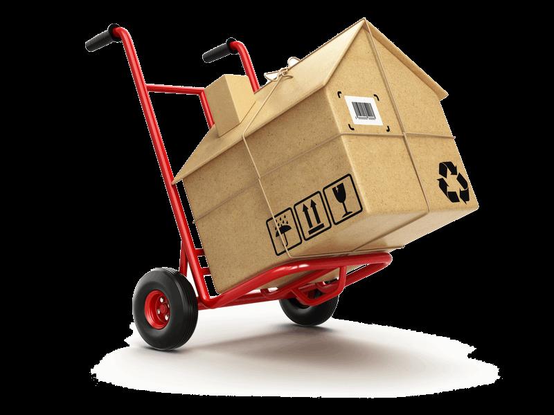Servicios logísticos de transporte y almacenamiento - Servicios de Mudanzas